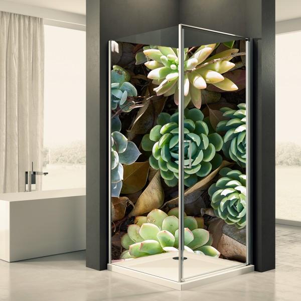 Duschrückwand Motiv 0091 Succulente