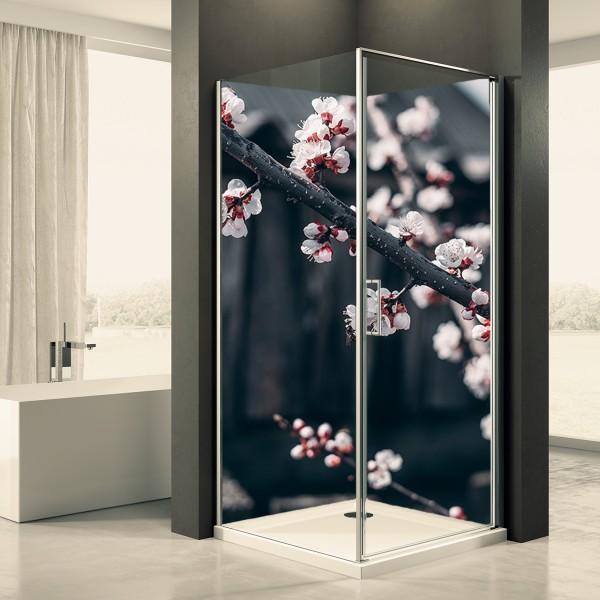 Duschrückwand Motiv 0017 Kirschblüte
