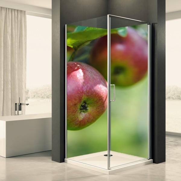 Duschrückwand Motiv 0048 Apfel