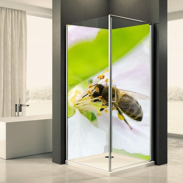 Duschrückwand Motiv 0016 Blüte Biene
