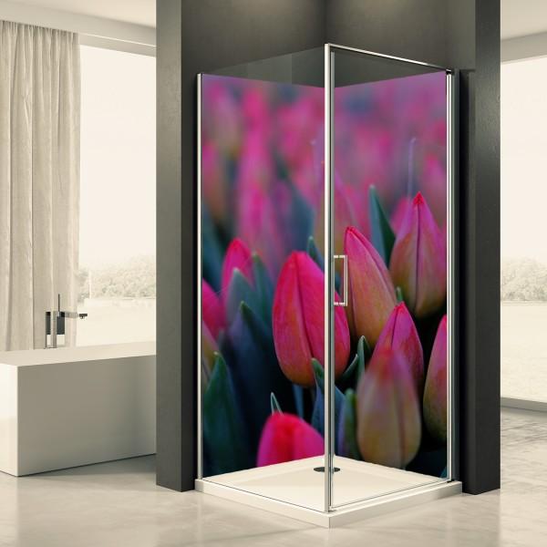 Duschrückwand Motiv 0063 Tulpen
